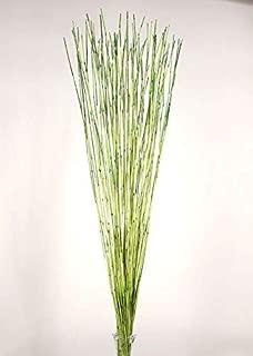 Green Floral Crafts | Decorative Reed Sticks - Lemon Lime Green