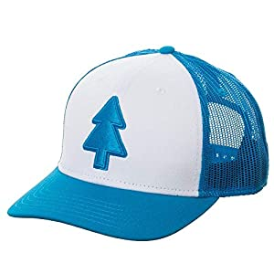 Gravity Falls – Dipper's Hat – Curved Trucker – Officially Licensed