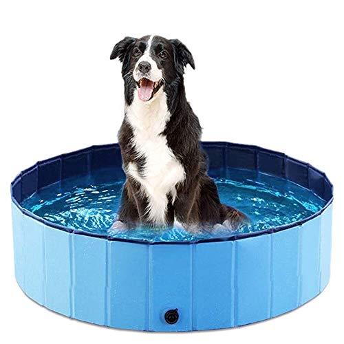 Faltbarer Hundepool für Haustiere, klein, 80 x 20 cm, Planschbecken für Haustiere und Kinder, stabiler Hundepool mit Haustier-Badebürste, Kinderbadewanne für Garten, Terrasse, Badezimmer