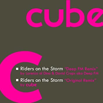 Riders On the Storm (Remix)