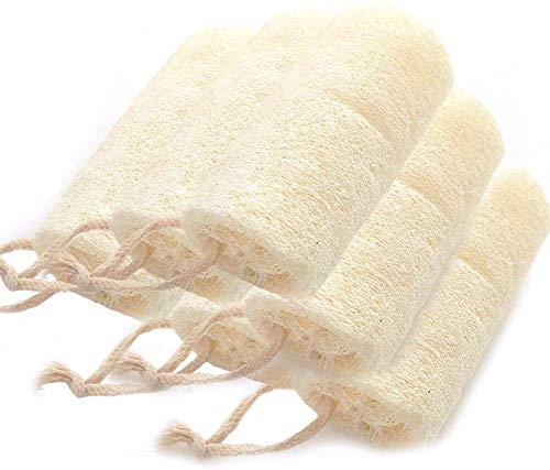 6 Stücke Natürliche Luffa mit Schlüsselband, 10cm Naturschwamm Luffa Schwamm, zur Abgestorbene Hautschuppen Werden Entfernt für die Körperpflege, Perfekt für Geschirrspühlen, Putzen und Duschen