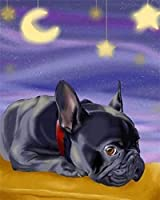 NC56 DIY Adult digital painting starry sky black bulldog digital oil painting paint adult painting kit children kids birthday wedding decoration gift