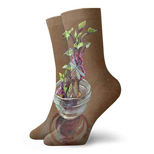 VJSDIUD Calcetines cortos largosy Sweet Potato Pot Plant Adult Short Socks Cotton Fun Socks for Mens Womens Yoga Hiking Cycling Running Soccer Sports