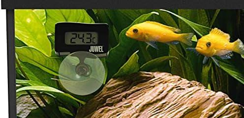 Amazon Com Juwel Aquarium Digital Thermometer 16 C 42 C New Clothing Collocazione nel negozio di acquariologia. juwel digital aquarium thermometer