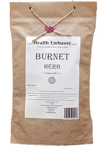 Health Embassy Großer Wiesenknopf Tee (Sanguisorba officinalis L.) / Burnet Herb Tea, 50g