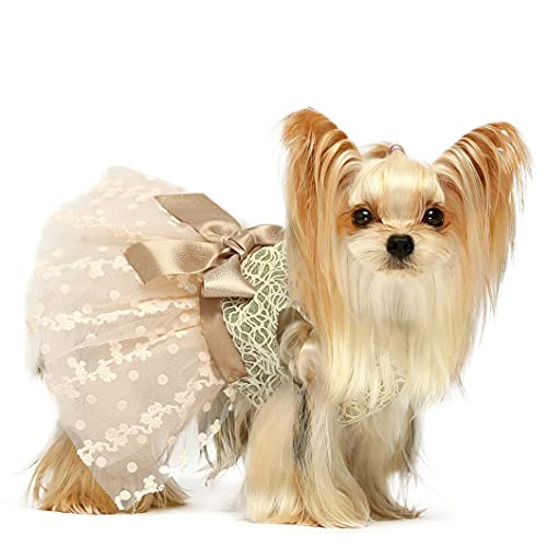Fitwarm Shining Embroiderd Dog Dress Doggie Tutu Flower Girl One-Piece with Bowknot Pet Clothes for Wedding Birthday Party Doggy Gown Puppy Outfits Cat Apparel Champagne Medium