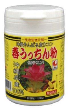 【春ウコン】 春うっちん粉 容器入 100g×12P うっちん沖縄 高品質なウコンを使用 クルクミンや精油成分豊富 のみやすい錠剤タイプ