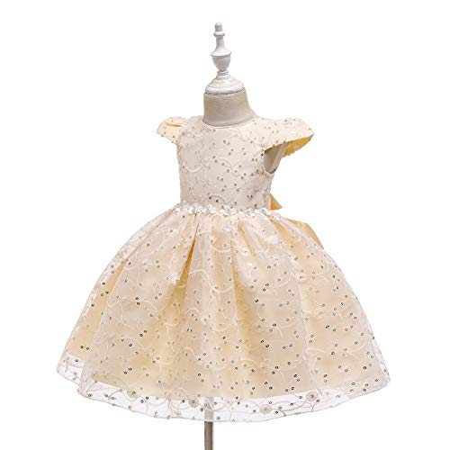Zoet Princess Dress Baby van meisjes onder de leeftijd van Patroon Solid Color Mesh jurk geborduurd Flower Rok Princess Tutu hjm (Color : Champagne, Size : 120cm)