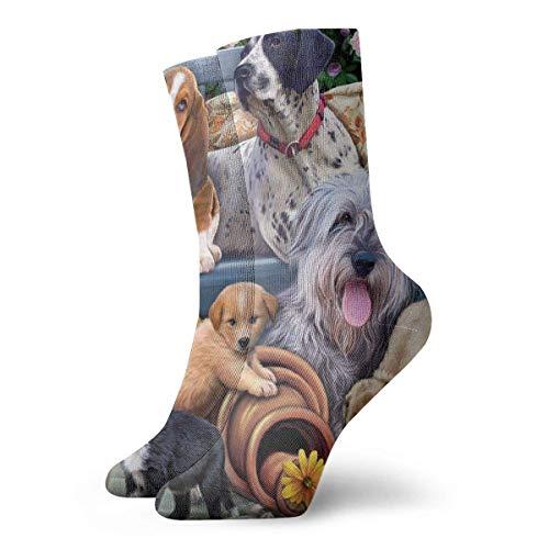 AORSTAR Socken Socks Breathable Dogs On A Bench Crew Sock Exotic Modern Women und Men Printed Sport Athletic Socks 11.8in