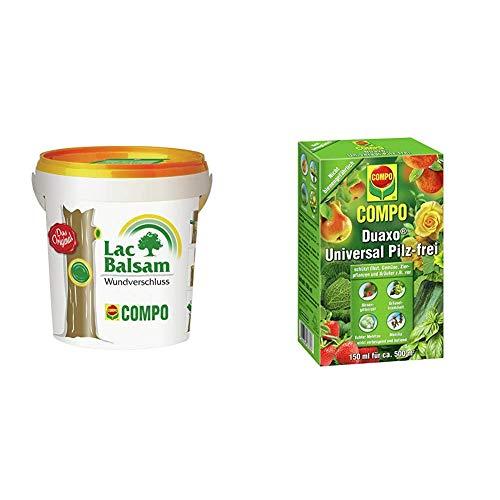 Compo Lac Balsam, Wundverschlussmittel zur Behandlung an Zier- und Obstgehölzen, 1 kg & Duaxo Universal Pilz-frei, Bekämpfung von Pilzkrankheiten an Obst, Gemüse, Zierpflanzen und Kräutern, 150 ml