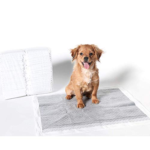 MICRORANGE Dog Training Pads, Leak-Proof 6 Layer Ultra Absorbent, Bamboo Charcoal Potty Pad, Odor Eliminating, Quick Dry, Regular Size for Puppy, 50 Count