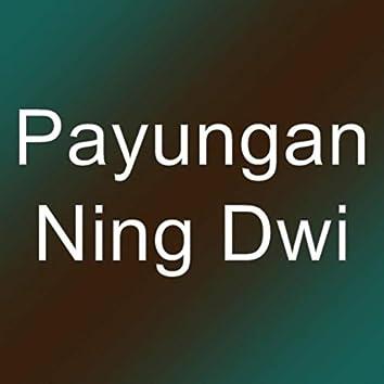 Ning Dwi