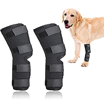 ROLLMOSS Canine Dog Knee Brace Professional Dog Knee Brace for Hind Leg Knee Brace for Dogs with Torn Acl Protect Dog Safety Dog Back Leg Braces for Prevent Injuries and Sprains Helps  S