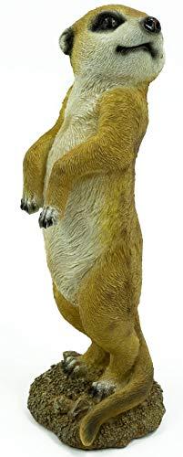 ¡Bambelaa! Figura de suricata, escultura de jardín, decoración de jardín, figura de jardín grande por fuera y por dentro para colocarla a 27,5 cm de altura.