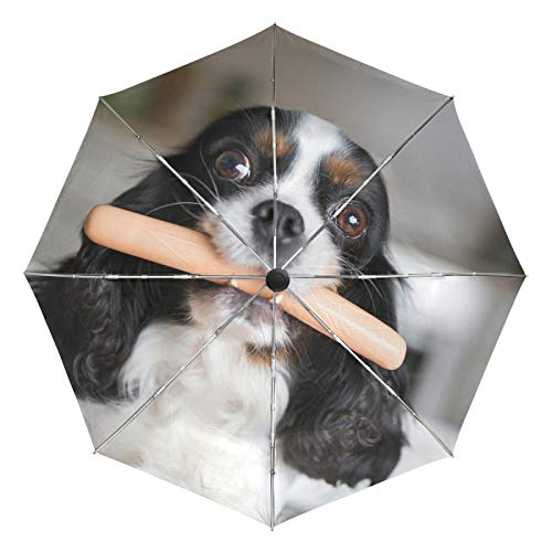Small Travel Umbrella Windproof Outdoor Rain Sun UV Auto Compact 3 Folds Umbrellas Cover - Funny Dog with Sausage in Mouth