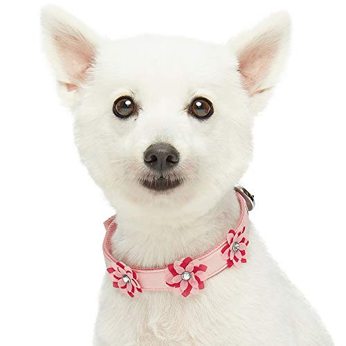 Umi. Essential Charming Floral Designer Dog Collar in Baby Pink with Metal Buckle, Neck 23cm-32cm, for Small Breed