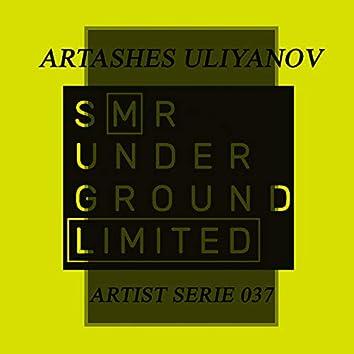 Artist Serie 037