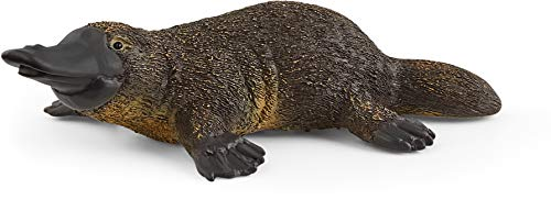 Schleich Wild Life, Animal Figurine, Animal Toys for Boys and Girls 3-8 years old, Platypus
