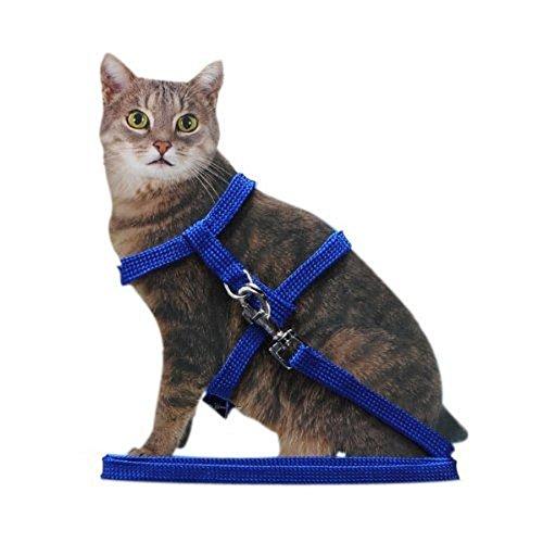 Ducomi Silvestro - Arnés Ajustable con Correa para Gatos, Conejos y Cachorros - Ideal en Paseos y Visitas al Veterinario - Accesorio para Mantener a Sus Mascotas Seguras (Azul)