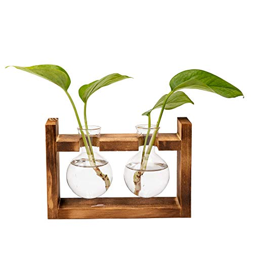 Hyindoor Vaso a bulbo in vetro con idroponico con cornice in legno massello retrò, utilizzato per la casa, il giardino, la decorazione di nozze(2 pezzi)