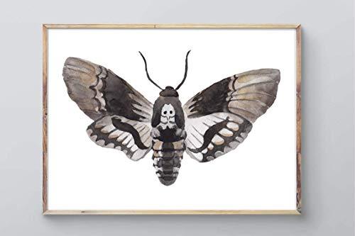 Din A4 Kunstdruck ungerahmt - Motte Totenkopfschwärmer Schmetterling Falter Aquarell Deko, Geschenk Druck Poster Bild