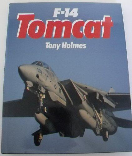 Combat Aces: F-14 Tomcat