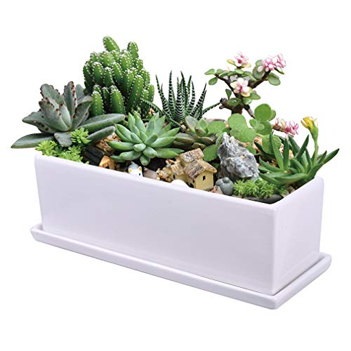 Notrefly Succulent Pot,11.8 Inch Rectangle White Ceramic Succulent Planter Pot Decorative Cactus Plant Pot Flower Container with Ceramic Tray