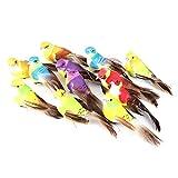 HERCHR 12 Piezas de Adornos de pájaros para decoración de Plantas de jardín de árboles de Navidad con Pluma de simulación