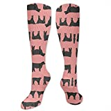 Yuanmeiju Animal Cows In Vast Steppe Moda para mujer Calcetines hasta la rodilla Calcetines casuales