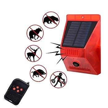 Best motion detector alarm outdoor Reviews