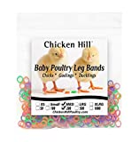 Baby Poultry Leg Bands 1/4