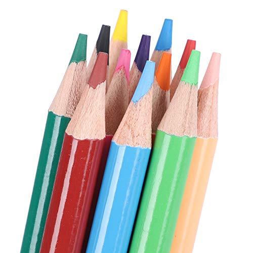Lápices de dibujo, lápices de dibujo duraderos, portalápices redondo de 12 colores, pintura artística, dibujo de graffiti, profesionales para estudiantes