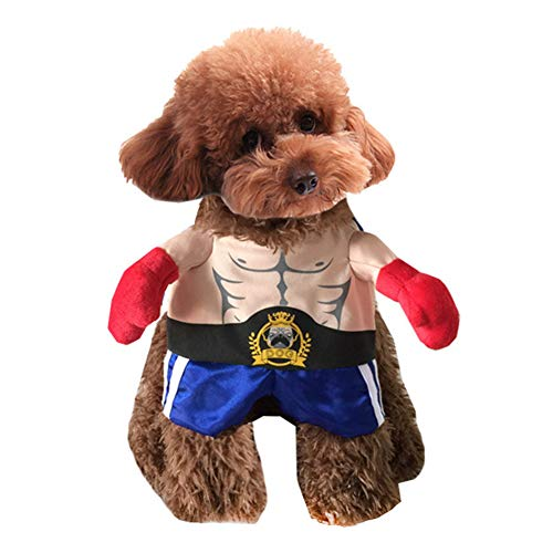 - Halloween Kostüme Boxer