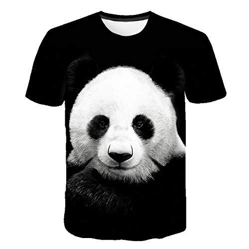 Hoodies Sweatshirt/Men 3D Print Sloth,Exotic Mammal on Branch,Sweatshirts for Teen Girls