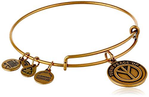 Alex and Ani Bangle Bar Turn Peace Up Rafaelian Gold-Tone Expandable Bracelet
