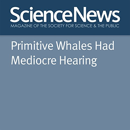 『Primitive Whales Had Mediocre Hearing』のカバーアート