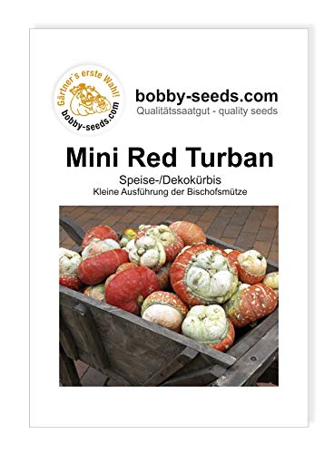 Mini Red Turban Bischofsmütze klein Kürbissamen von Bobby-Seeds, Portion