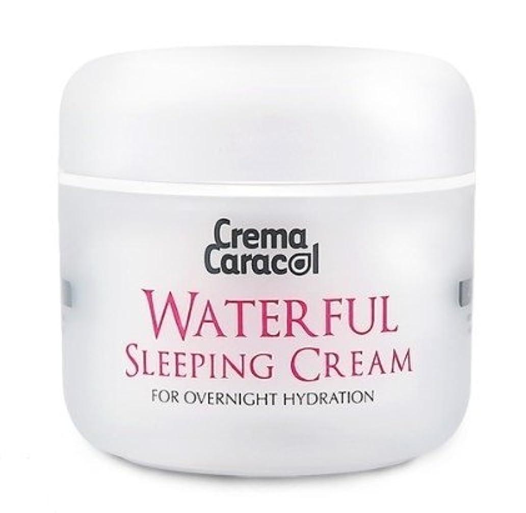 願望海藻不規則性[JAMINKYUNG] Waterful Sleeping Cream/孜民耕 [ジャミンギョン] ウォーターフルスリーピングクリーム [並行輸入品]