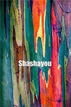 100 Stück seltene Regenbogen-Eukalyptus Bonsai-Baum Zierpflanzen Riesen Auffälliges Tropischer Baum für Garten Pflanzen der Außen Bonsai Geschenk: 9