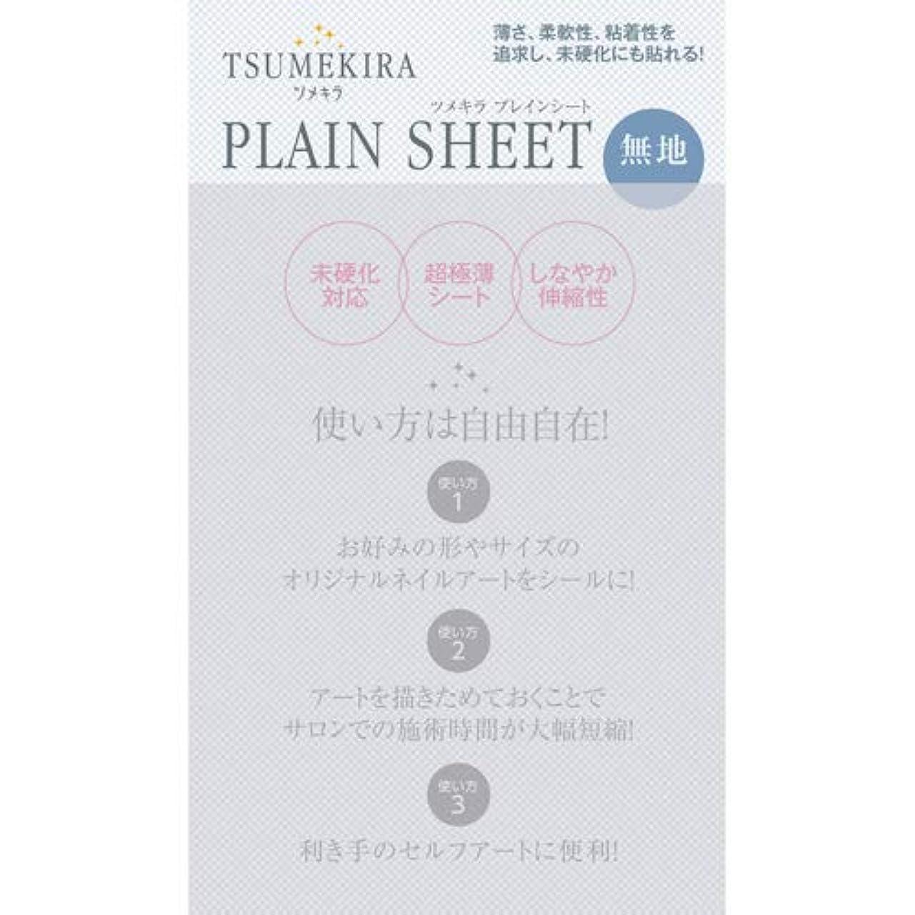 移住する増幅器違反TSUMEKIRA プレインシート 【アート?ネイル用品】