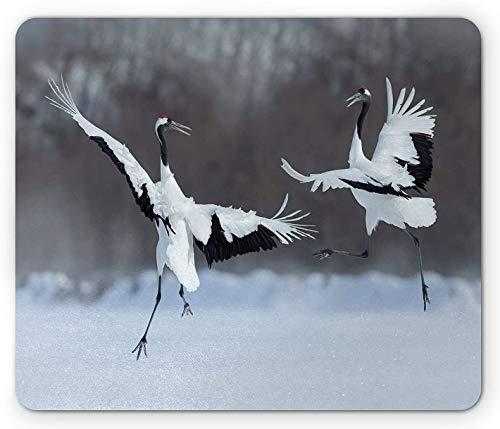 Africa Mouse Pad, tanzendes Paar Rotkronenkranich mit offenen Flügeln im Flug Romantischer Vogeldruck, Rechteck-Rechteck-Rutschgummimousepad, Weiß Schwarz