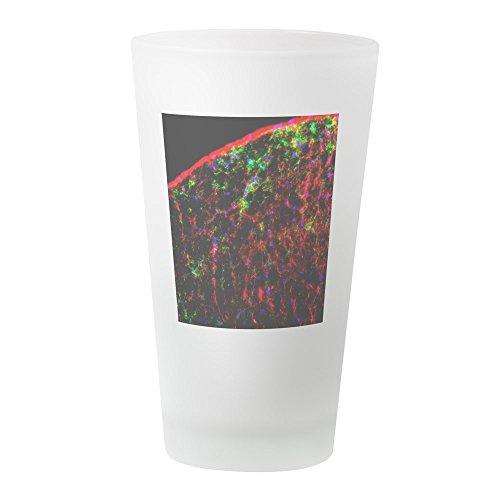 CafePress Nervenzelle Reaktion Pintglas frosted