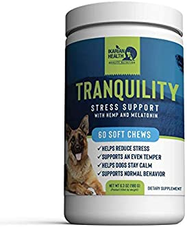 Explore calming chews for dogs