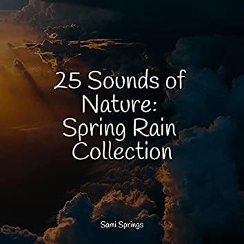 25 Sounds of Nature: Spring Rain Collection
