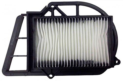 Preisvergleich Produktbild Champion Luftfilter Champion caf3203 Yamaha X-Max 250 cc (Luftfilter) / X-Max 250 caf3203 Air Filter (Air Filters)