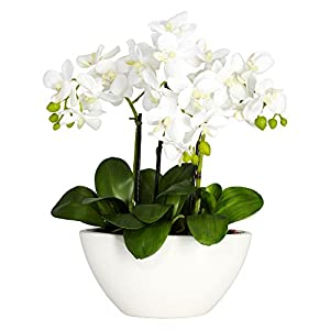 Nearly Natural 4804 15in. Phalaenopsis Silk Flower Arrangement,White,14.5″ x 11″ x 4.5″