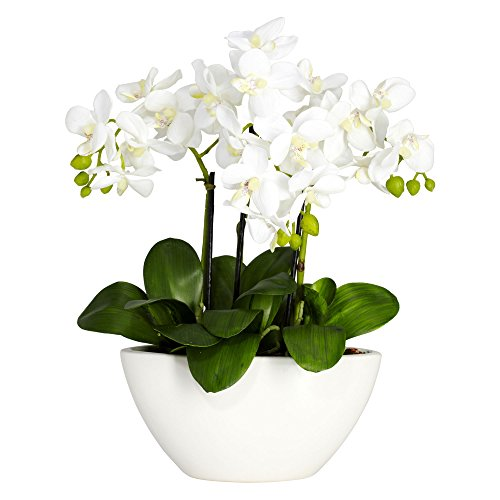 Nearly Natural 4804 15in. Phalaenopsis Silk Flower Arrangement,White,14.5