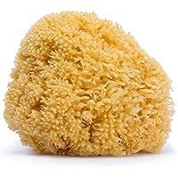Suavinex - Esponja Natural del Mar para bebé. tamaño grande. Esponja de bebé 100% Natural