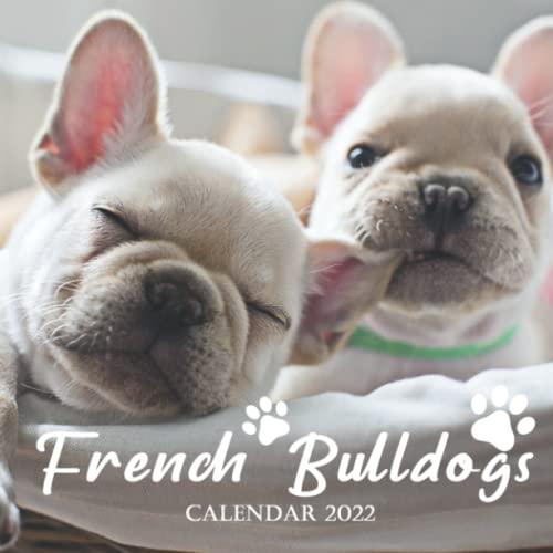 French Bulldogs 2022 Calendar: Squared Monthly Calendar Mini Planner 12 Months 2022 bonus September to December 2021 , Coll Funny Cute Dog Photos