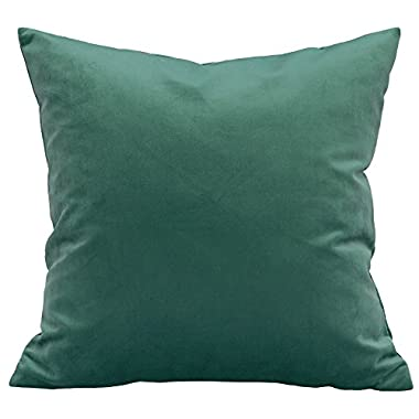TangDepot Solid Velvet Throw Pillow Cover/Euro Sham/Cushion Sham, Super Luxury Soft Pillow Cases, Many Color & Size options - (12 x12 , Clover)